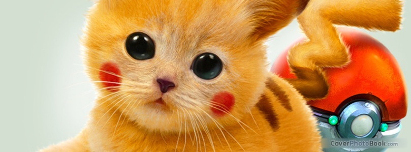 Real-Pikachu-Pokemon-Cat-Facebook-Cover